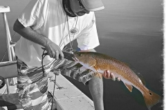Tails of 2 Spots Flats Fishing Charters